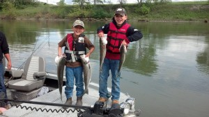 Sacramento River Stripers
